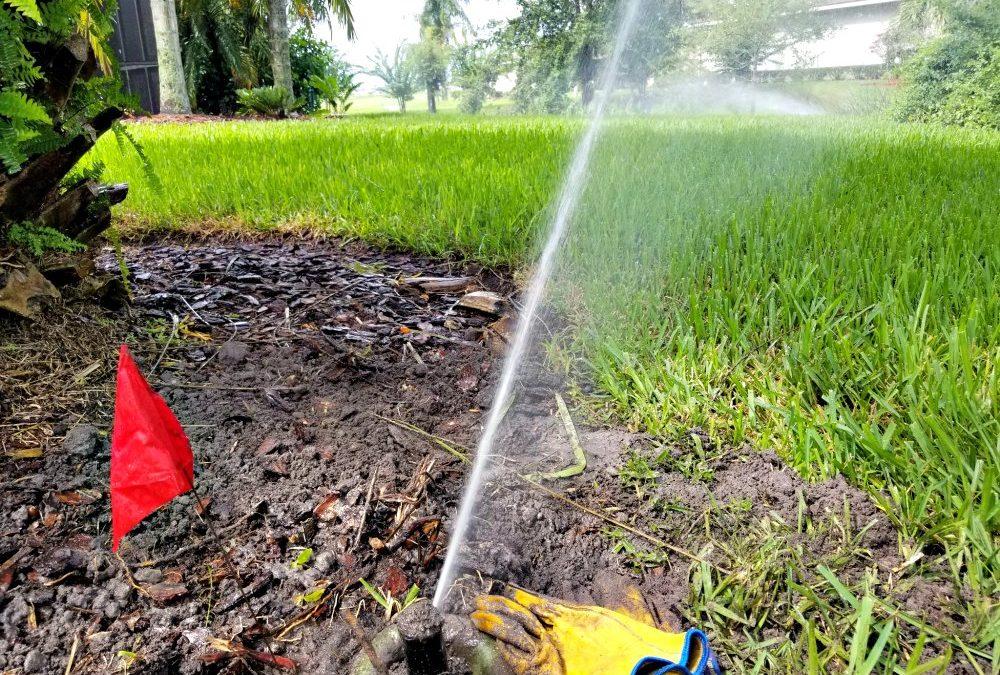 Tips to choosing the best sprinkler repair service firm