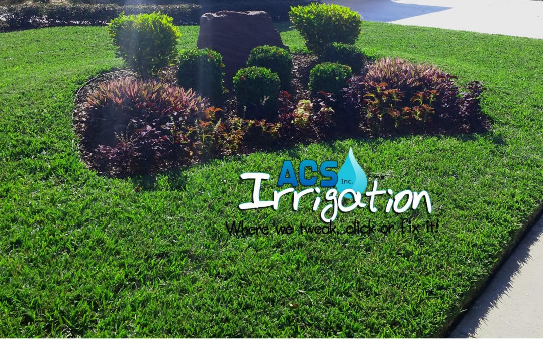 Top Four Essential Tips to Maintain Your Yard During Fall